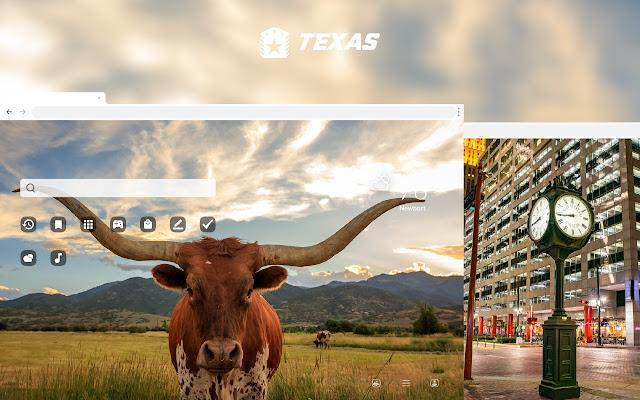 Texas HD Wallpapers New Tab Theme