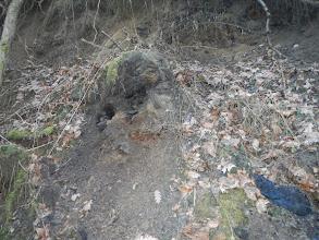 Photo: Další uhelná sloj (13.1. 2014).