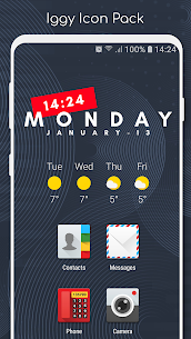 Iggy-Icon Pack v5.0.3 [Patched] 1