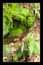 Photo: Araia - Fuente de la salud