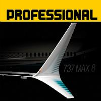 Flight 737 - MAXIMUM