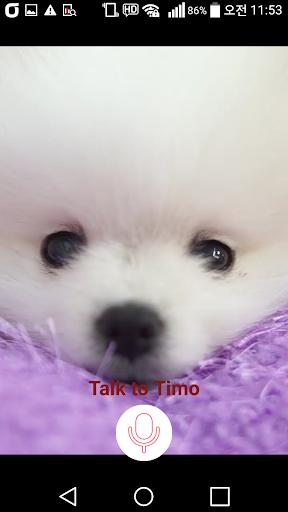 Timo my puppy Trial - Talk
