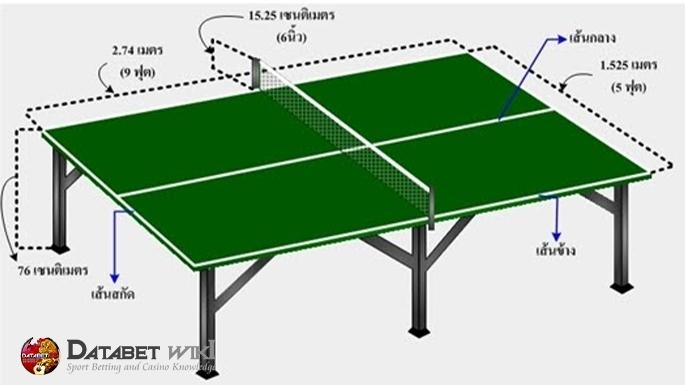 โต๊ะ ปิงปอง