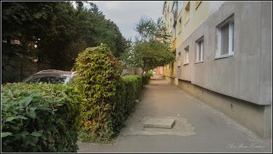 Photo: Str. Macilor - 2017.09.02
