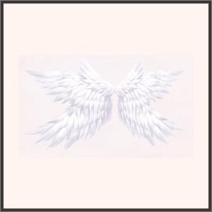 月星の羽翼