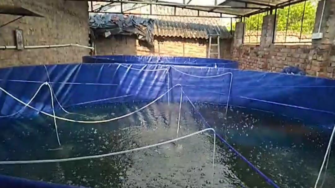 R S  BIOFLOC FISH FARM - Fish Farm in Kolkata