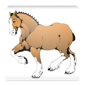 Horse Weight Estimator