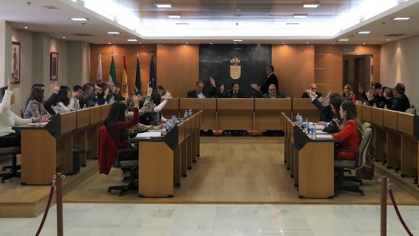 Imagen del Pleno en El Ejido