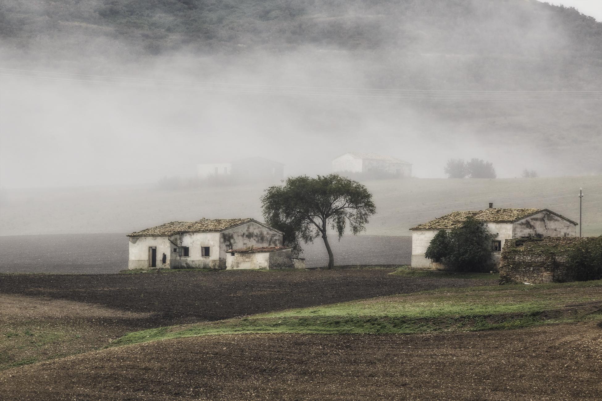 tu nebbia impalpabile e scialba di ph Silvio Basta