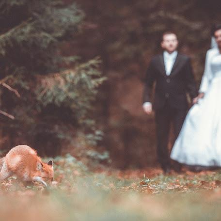 Wedding photographer Ján Saloň (jansalonfotograf). Photo of 13.11.2017