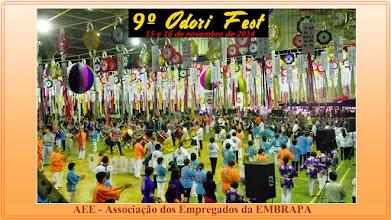 Photo: 9º Odori Fest - Londrina 15 e 16.11.2014