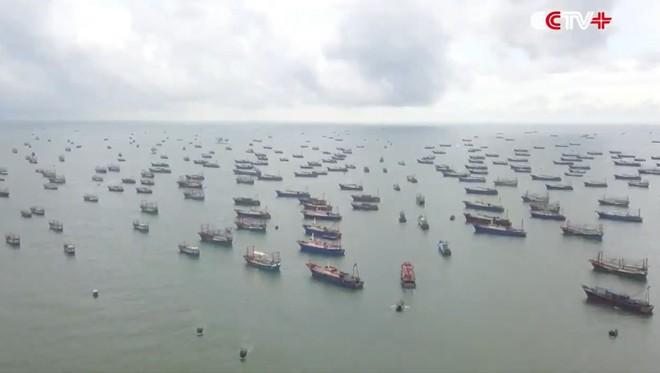 Hàng vạn tàu cá Trung Quốc xâm nhập biển Đông