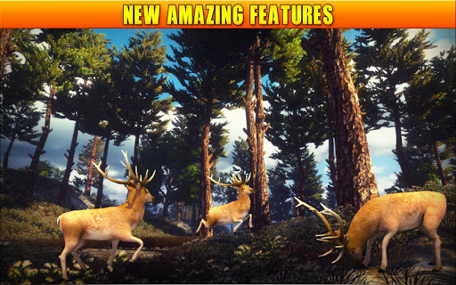 Deer Hunting 19 image | 21