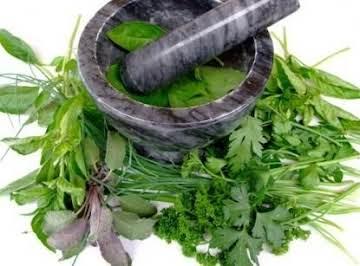 Herbs 101
