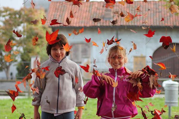 An happy Autumn di edith