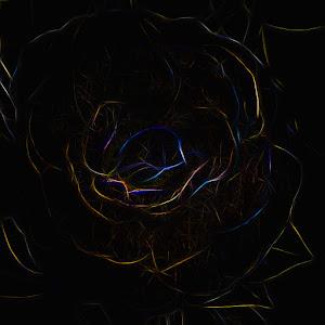 DSCN0803 (2)-Edit.jpg