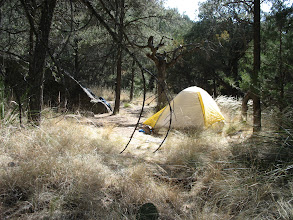 Photo: Magical campsite at Boulder Meadows in Big Bend