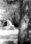 Fantasma de la virgen de Bachelor's Grove (1991)
