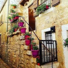 by Ana Hecimovic Najcer - Buildings & Architecture Other Exteriors