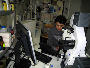 Photo: Dal Hyung on his experiment at the chemotaxis research lab
