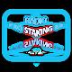 Rádio Pro Staking BR Download on Windows