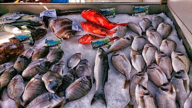 Photo: Les bons poissons du port : Sole, rascasse, daurade, sar royal,