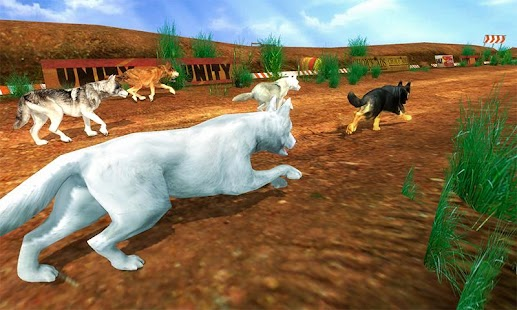Wild Wolf Jungle Animal Racing Fever 3D Race - náhled