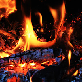 leaves & logs by Scott Hislop - Novices Only Abstract ( chimnea, logs, leaves, fire )