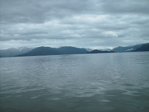 Photo: View toward the Stikine River from Dry Strait.