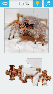 Jigsaw Puzzle: Spider - náhled