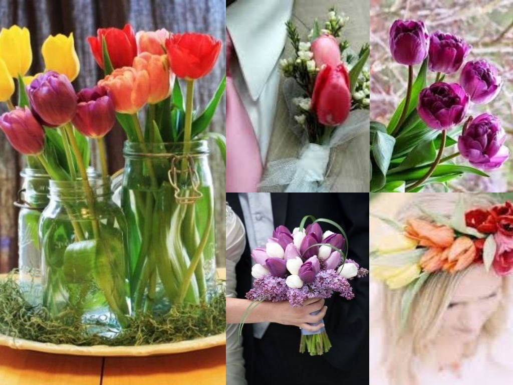Flower blog floral ideas and arrangements avas flowers embellish your wedding with tulips tulips are a perfect spring bloom they have a unique bell shaped blossom that feels rubbery to the touch and they grow izmirmasajfo Gallery