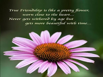 Friendship Quotes - náhled