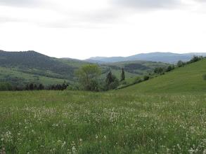 Photo: 18.Po lewej Ogorzała (806 m). Na wprost Gorce.