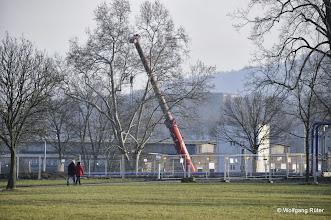 Photo: Der FFH Rosensteinpark mit für die Baulogistik vorgesehener Fläche und Bahngelände des Abstellbahnhofs