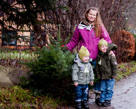 Photo: Geting the christmas tree with the family