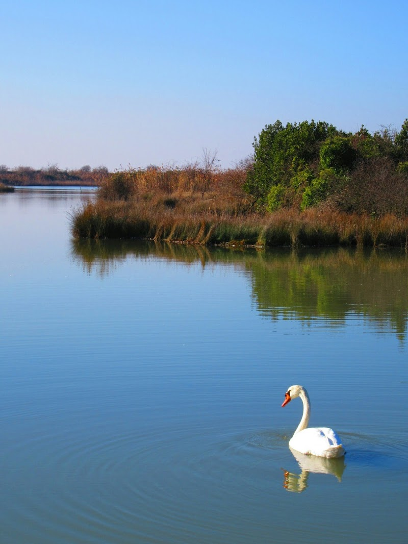 Incantevole laguna di Gigetta