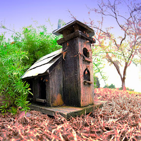 Bird House Estate by Merna Nobile - Artistic Objects Antiques ( bird house, estate )