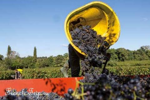 Saint-Emilion /Сент-Эмильон, Аквитания, Франция -что посмотреть в окрестностях Бордо, виноградники Бордо. Как добраться, расписание, что посмотреть в городе