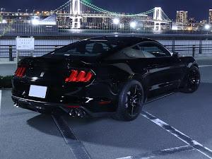 シェルビー GT350 のカスタム事例画像 Black Cobraさんの2020年02月02日07:38の投稿