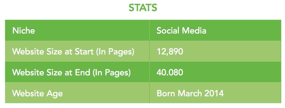 Social Media Niche Stats