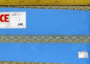 Photo: 在庫無し:№47136-55ー金トーション:巾24mm №47136-447ー銀トーション:巾24mm