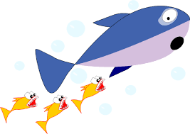 Image result for shark and fishes cartoon