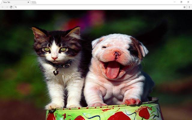 Dogs Pics & New Tab