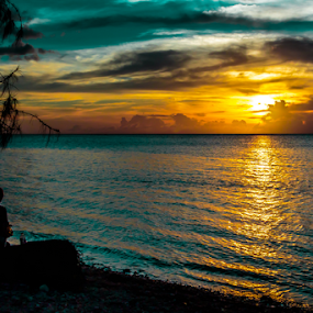 Sunset Couple by Ray Shiu - People Street & Candids ( clouds, person, male, silhoutte, ocean, beach, scenic, people, log, human, sky, girl, guam, tree, female, sunset, woman, boy, man,  )