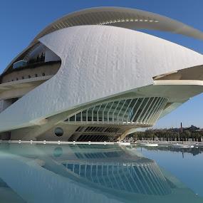 Opera House, Valencia by Luis Felipe Moreno Vázquez - City,  Street & Park  Street Scenes ( water, buildings, reflections, architecture, valencia, opera house, spain, calatrava )