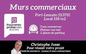 locaux professionnels à Port Leucate (11)