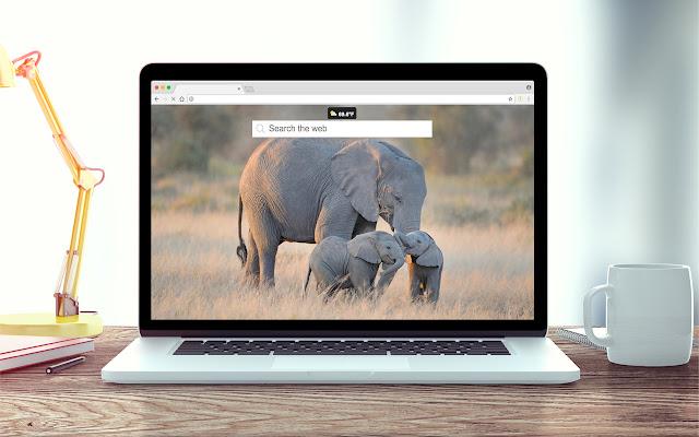 Elephants Wallpapers New Tab Theme