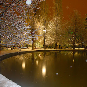 HAPPY NEW YEAR by Nihan Bayındır - City,  Street & Park  City Parks ( reflection, merry, freedom, new year, photography, love, life, nature, happy, snow, peace, friendship, lovely, passion, light,  )