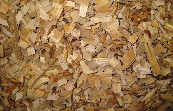 Add your favorite wood chips (I chose apple wood), and let the games begin.