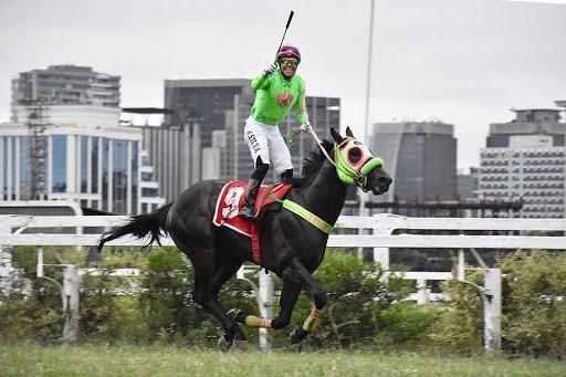 Wil Myers fue demasiado para sus rivales en el Jockey Club de São Paulo
